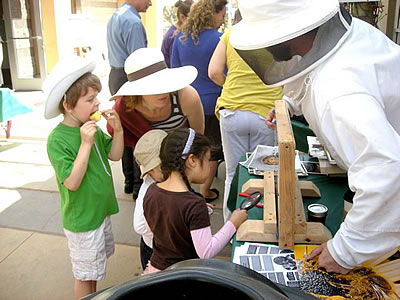 The Beekeeper Demonstration